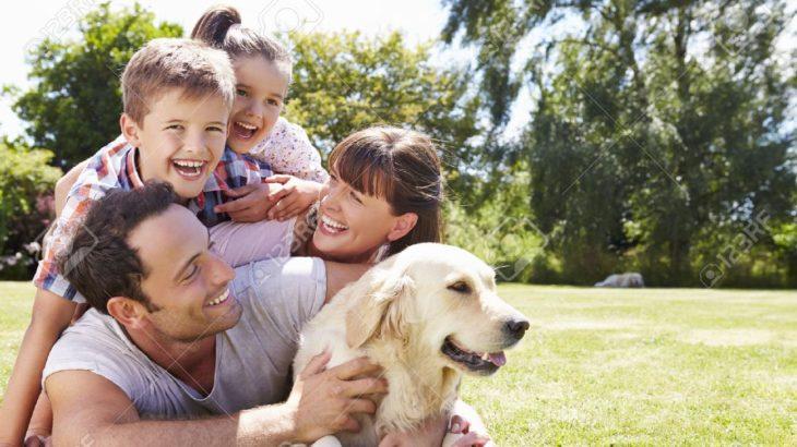 犬は家族と言うが…