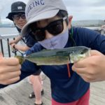 さびき釣り 20匹 釣るとどうなる